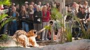 Forša fīča zoodārzā