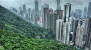 Honkongas dvēsele. Sapnis.