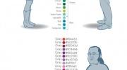 Kā kurš redz krāsas