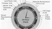 Mūsu planētas vēsture saspiesta 24 stundās