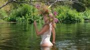 Papardes ziedu meklējot