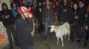 Visiem patīk grindcore koncerti